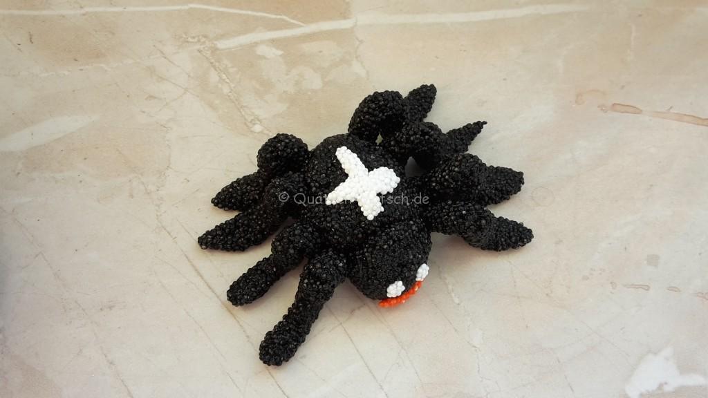 giftigste Spinne der welt