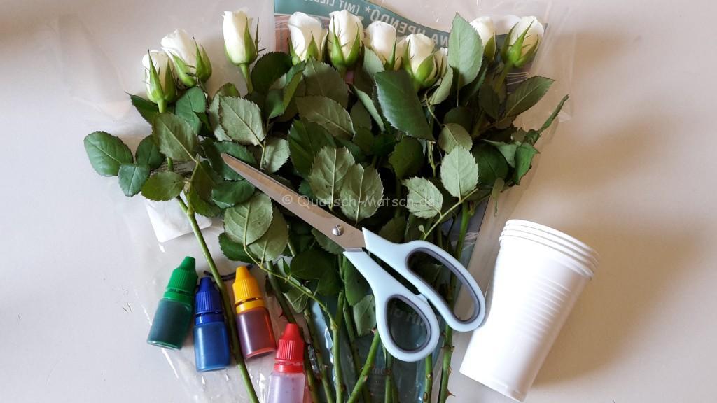 Blumen färben mit tinte und lebensmittelfarbe