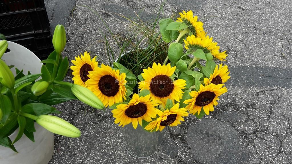 Sonnenblumen Wochenmarkt Itzehoe