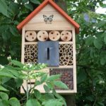 Insekten ein Zuhause geben – Gutes für die Natur