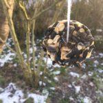 Vogelfutter selber machen – Durch den Winter
